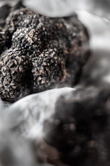 trøffel_Truffe_close_up_2