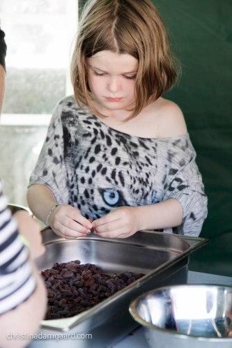 kulinarisk-sydfyn-2016-163